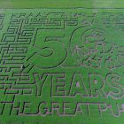 Get Lost in a Corn Maze near Edmonton