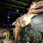 A Dino-mite New Exhibit