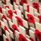 Remembrance Day Ceremonies in Edmonton